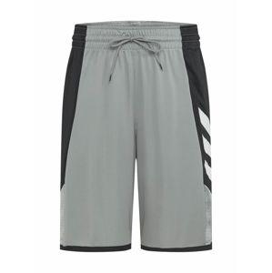 ADIDAS PERFORMANCE Sportovní kalhoty 'Pro Madness'  bílá / šedá / černá