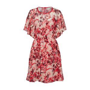 MAX&Co. Šaty 'PENNA'  růžová / bílá