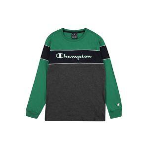 Champion Authentic Athletic Apparel Tričko  zelená / tmavě šedá / noční modrá / offwhite