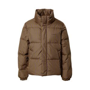Carhartt WIP Zimní bunda 'Danville'  hnědá