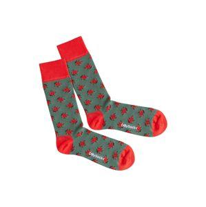 DillySocks Ponožky 'Forest Bug'  zelená / červená