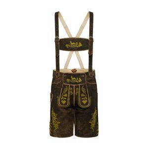 ALMSACH Krojové kalhoty  hnědá