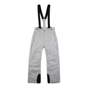 4F Sportovní kalhoty  šedá / černá